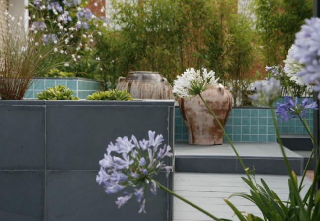 las plantas invaden el jardin de Avellina!!